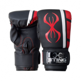Boxing Gloves & Focus Pads *SOLD OUT*